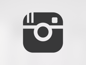instagram-logo-white-vector